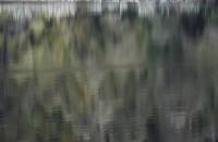 Mirror Lake. digital photograph.